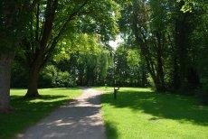 Fot. Pixabay/[url=http://pixabay.com/pl/park-szlak-%C5%9Bcie%C5%BCka-spokojny-cie%C5%84-454416/]Gaetringen[/url] / [url=http://pixabay.com/pl/service/terms/#download_terms]CC O[/url] Wybierz park na obrzeżach miasta na spacer