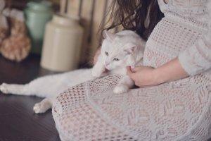 Toksoplazmozą możesz zarazić się nie tylko od kota. Trzeba uważać też na to co się je.