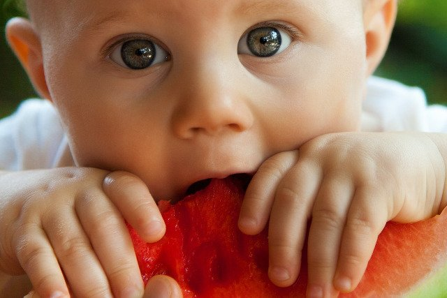 Fot. Pixabay / [url=https://pixabay.com/en/baby-bite-boy-child-cute-eat-84686/]PublicDomainPictures[/url] / [url=https://pixabay.com/en/service/terms/#usage]CC0 Public Domain[/url]