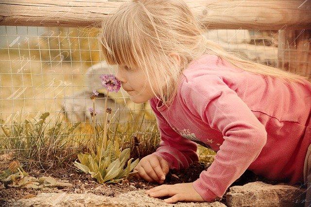Fot. Pixabay/[url=http://pixabay.com/pl/dziecko-dziewczyna-kwiat-zapach-645434/]Pezibear[/url] / [url=http://bit.ly/CC0-PD]CC0 Public Domain[/url]