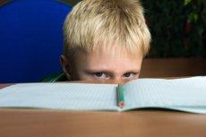 W nowej reformie jest wiele zaprzeczeń. Zarzuca jej się, że nie uwzględnia nowoczesnych metod pedagogicznych.
