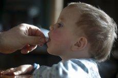 Drób jest mięsem, które jako pierwsze należy wprowadzić do diety dziecka