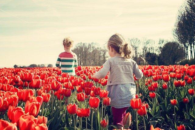 Fot. Pixabay/[url=http://pixabay.com/pl/dziewczyny-dzieci-tulipany-holandia-739071/]benscherjon[/url] / [url=http://bit.ly/CC0-PD]CC0 Public Domain[/url]