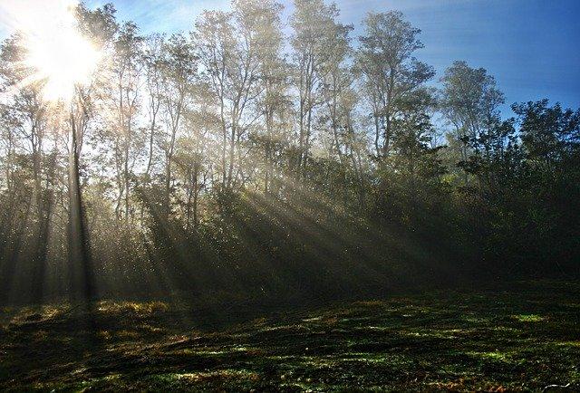 Słońca jest coraz mniej – wykorzystujmy jeszcze wrześniowe promienie, od października czas na suplementy